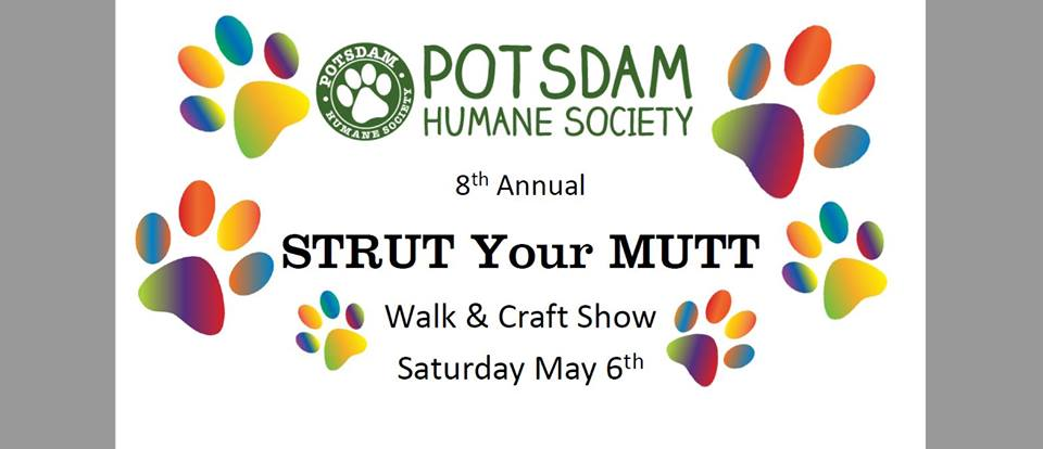 <a href='http://potsdamhumanesociety.org/wp/?p=5366'>8th Annual Strut Your Mutt </a>