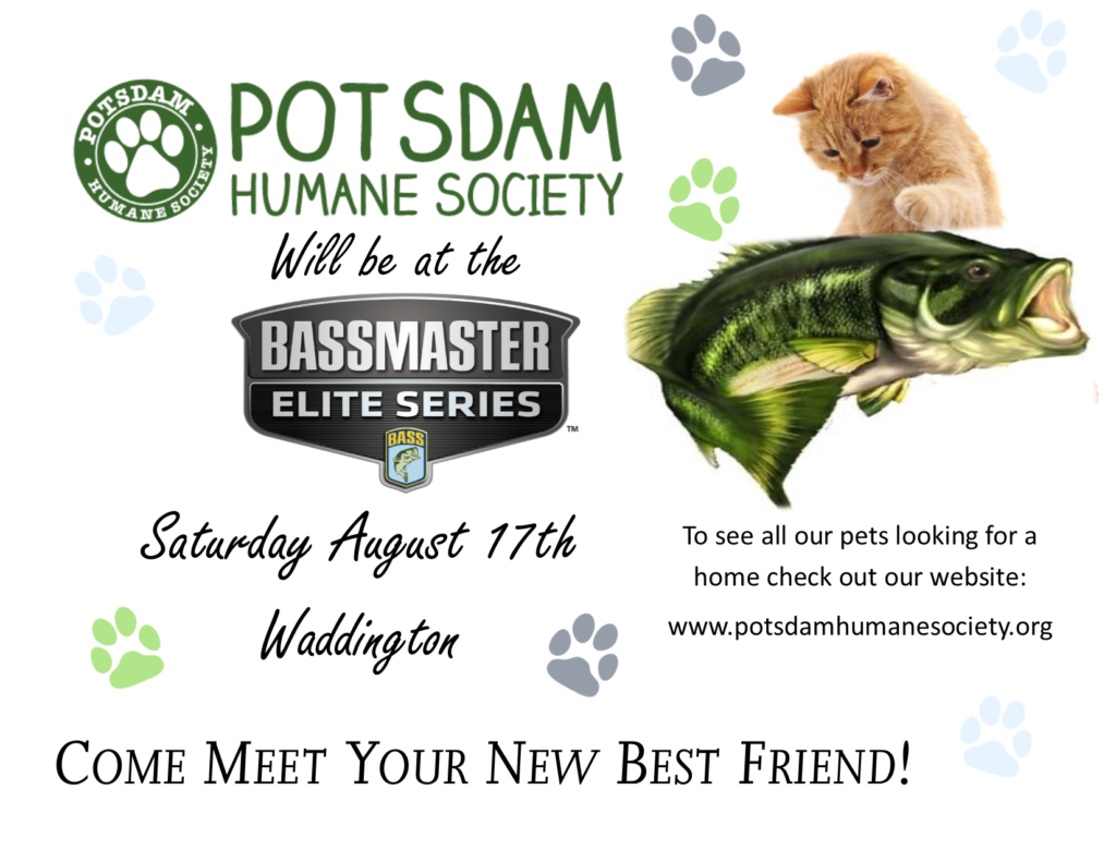 <a href='http://potsdamhumanesociety.org/wp/?p=8632'>Visit Us in Waddington Saturday August 17th</a>