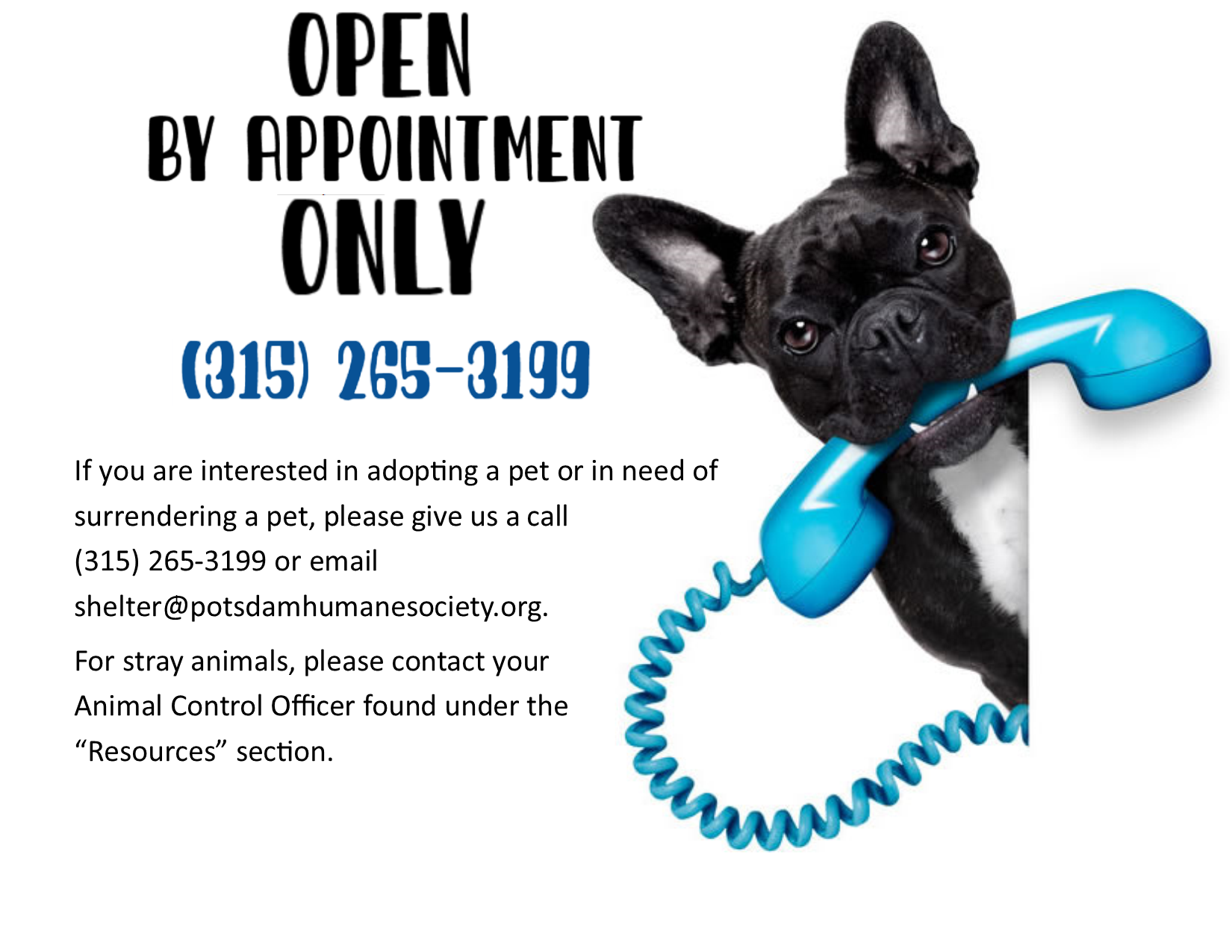 <a href='http://potsdamhumanesociety.org/wp/?p=9532'>Shelter Closed for Walk- Ins </a>