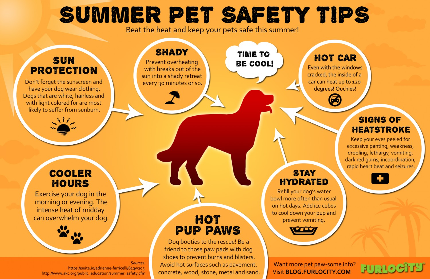 <a href='http://potsdamhumanesociety.org/wp/?p=7142'>Summer Pet Safety Tips</a>