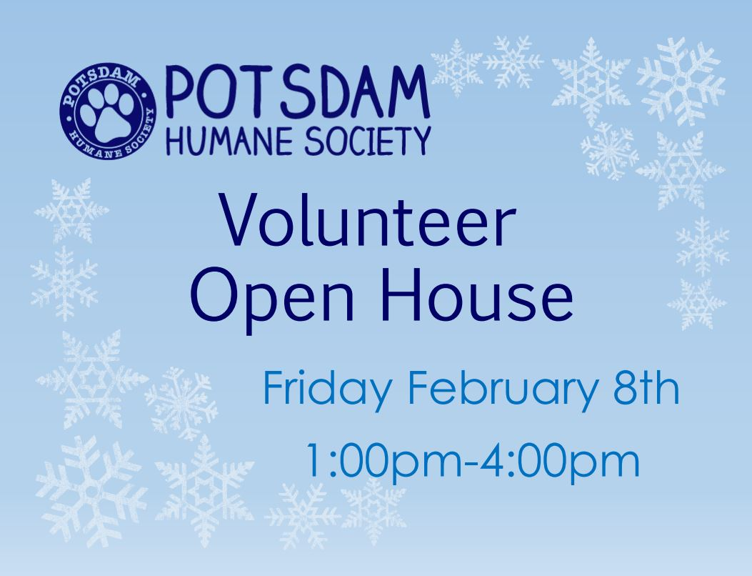 <a href='http://potsdamhumanesociety.org/wp/?p=7820'>Volunteer Open House Feb 8th</a>