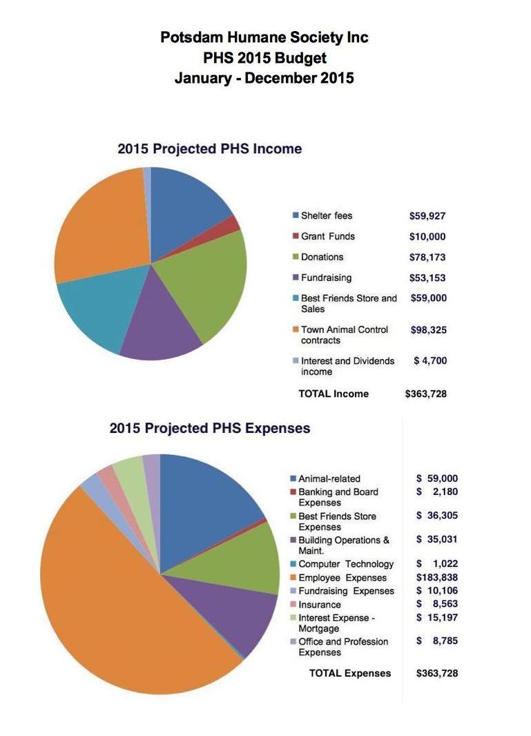 2015 PHS Budget pie chart