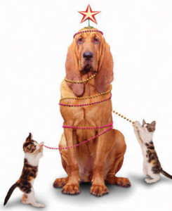 christmas_dog_cat
